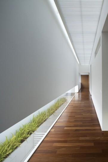architettura erba