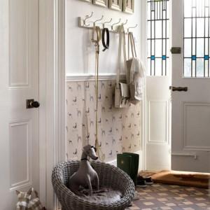 interno hallway-dogs