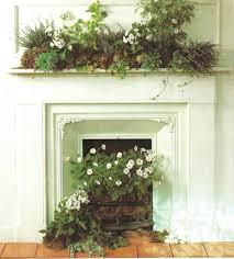 uso alternativo piante