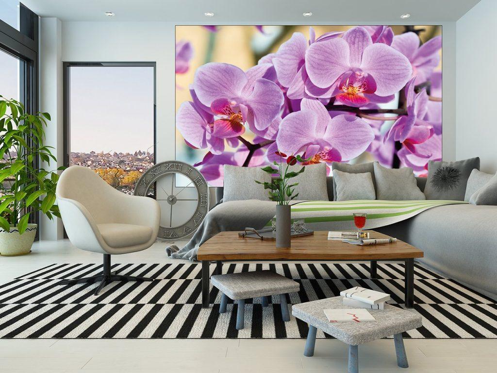 .amazon di great art varie dimesnione Murale orchidea-Fiori di orchidea per la cucina, camera da letto o soggiorno-bella decorazione fiori