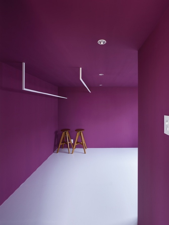 interno total orchid
