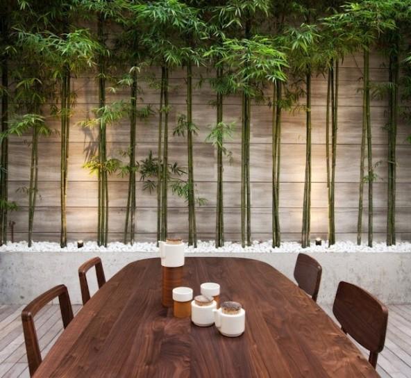 garden bamboo-in-sala-da-pranzo