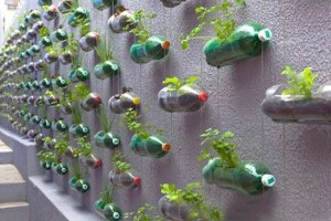 architettura green-wall-garden-recycling-plastic-bottles