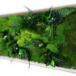.big quadro vegetale realizzabile su misura