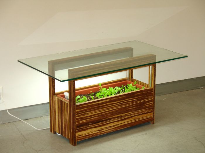 design Vege-Table di Judy Hoysak
