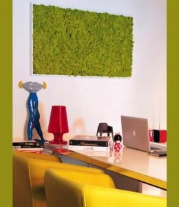 parete MossFrame è una serie, ideata dal marchio italiano Benetti, che prevede sette tipi di cornici laccate bianche che possono contenere sei diversi colori di… muschio
