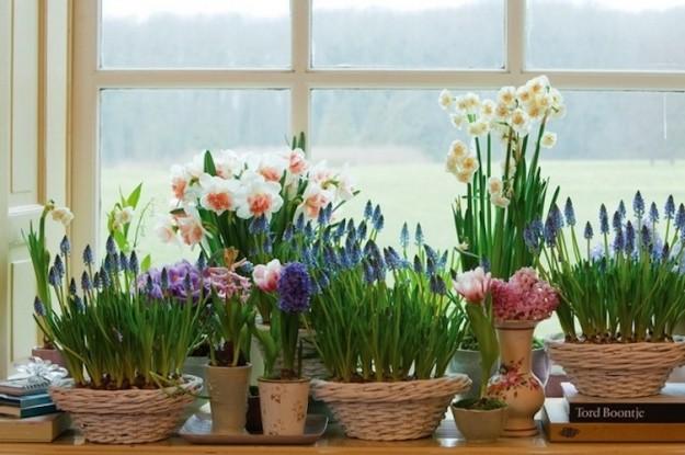 vaso cestini-portafiori