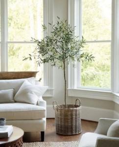vaso cesto-per-pianta-in-salotto