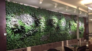verde profilo prati giardini e orti verticali