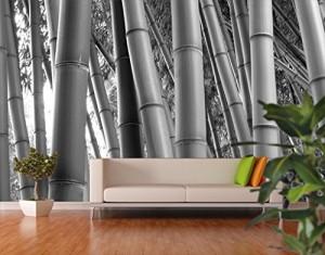 .amazon bianco e nero di mantiburi Carta da parati adesiva Bamboo