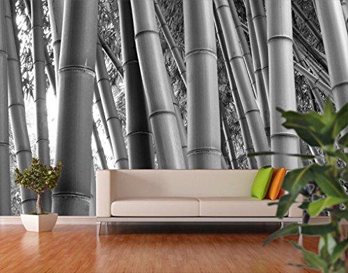 Con il bamb design ecosostenibile blog arredamento for Carta da parati per esterni