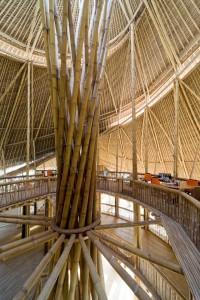 arch green school il cuore della scuola formato da una doppia ellissse centrale