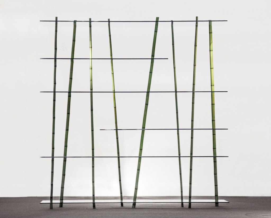 arredi COLLEZIONE 'WILD' BAMBOO FOREST BY LAB POETIC