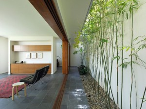 giardino zen Fig-Tree-Pocket-House-by-Shane-Plazibat-Architects-06-800x599
