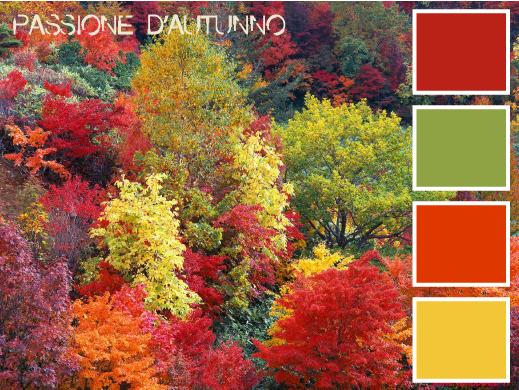 colori palette