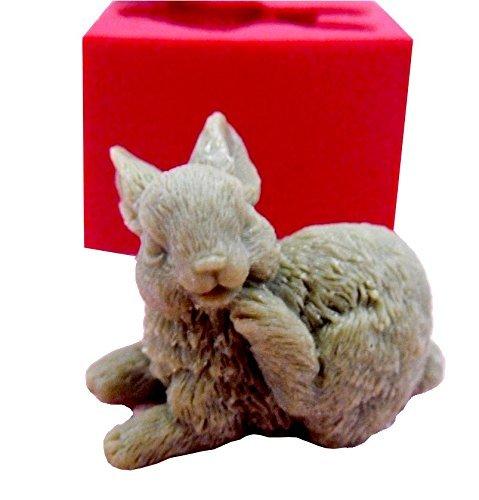 .amazon coniglio ceramica STAMPO IN SILICONEper realizzareCALCO DI CONIGLIO PER RIPRODUZIONI DI OGGETTI IN SAPONEGESSO, RESINA, GHIACCIO, CERAMICA, ARGILLA, CERA Ecceurope silicone mold maker