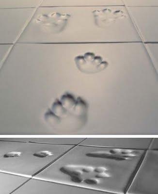 design complementi zampe un progetto di maija puoskari & tuukka tujula riproduce le impronte di piccoli animali sulle mattonelle