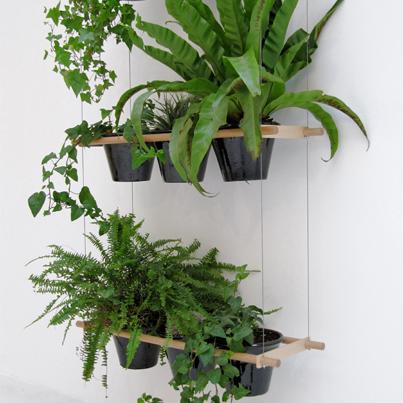 VERDE elemento divisorio separe-etcetera Creato dal designer Vincent Vandenbrouck, questo divisorio vegetale