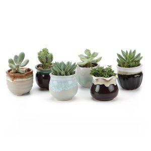 amazon-t4u-65-cm-in-ceramica-smaltata-sucuulent-fluida-vaso-per-piante-con-vaso-per-fiori-a-forma-di-cactus-contenitore-per-alimenti-colore-nero-ceramica-no-9-small