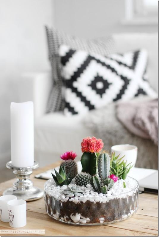 immagine-7case-e-interni-tendenza-cactus-piante-grasse-19_thumb1