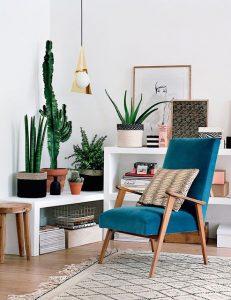 pianta-cactus-casa-nordica
