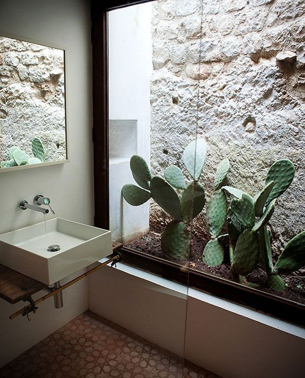 pianta-indoor-cactus-bathroom-ideas