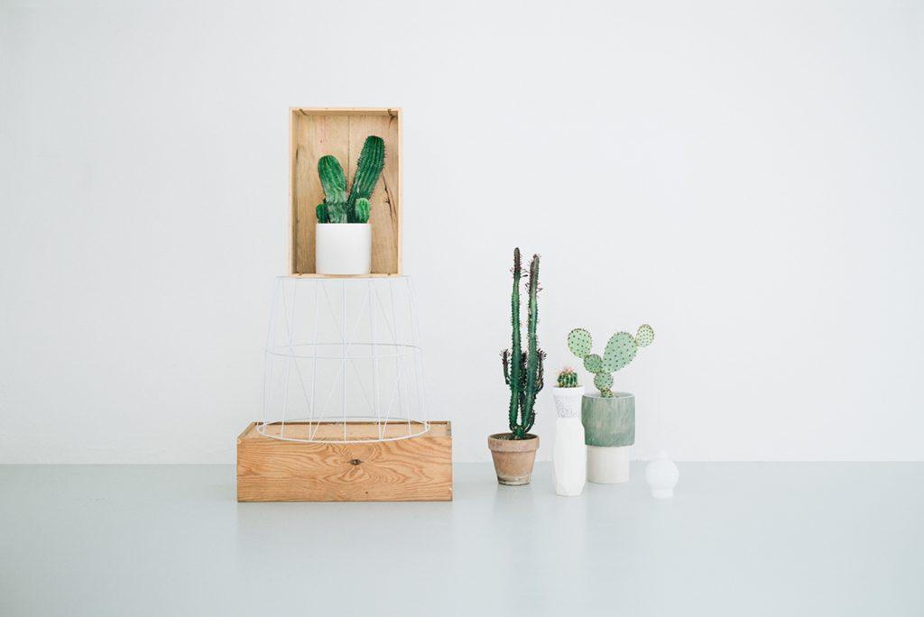 pianta-large_cactus-design-store-copenhagen-1