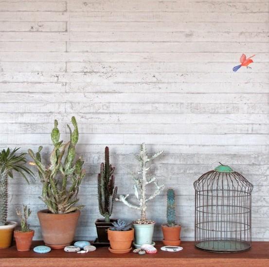 pianta-piantine-varie-1