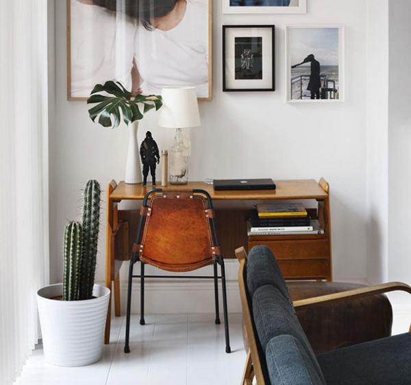 piante-cactus-in-workspace-1
