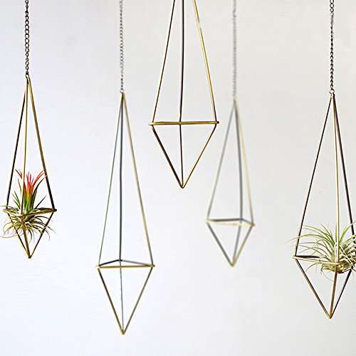 amazon-mkono-1pack-himmeli-portacandele-da-parete-per-airplant-tillandsia-con-catenina
