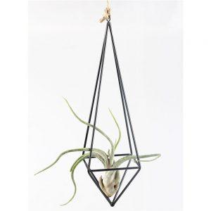 amazon-tillandsia-sostegno-per-pianta-epifita-in-metallo-a-sospensione-in-stile-rustico-a-forma-di-piramide-a-quadrilatero-altezza