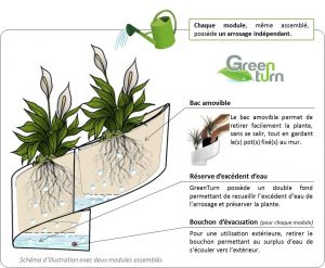 amazon-modulgreen-vaso-per-piante-a-muro-design3