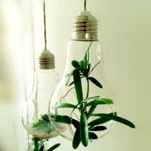 amazon-soledi-design-fantastico-portafiori-pianta-in-vetro-vaso-da-fiori-sospeso-a-forma-di-bulbo-trasparente-fiori-pianta-acquatica-idrofonico