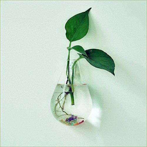 amazon-vaso-trasparente-vetro-poltrona-sospesa-per-micro-paesaggio-fiore-idroponica-forma-a-goccia