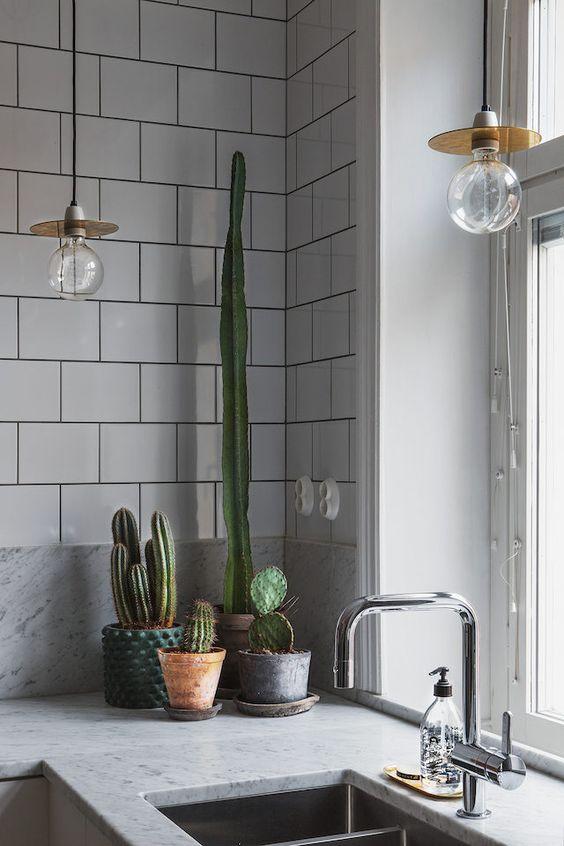 cactus-idee-per-arredare-con-i-cactus-home-decor-with-cactus