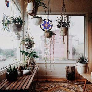 hanger-plant-macrame-eye-candy-designrulz-10-3