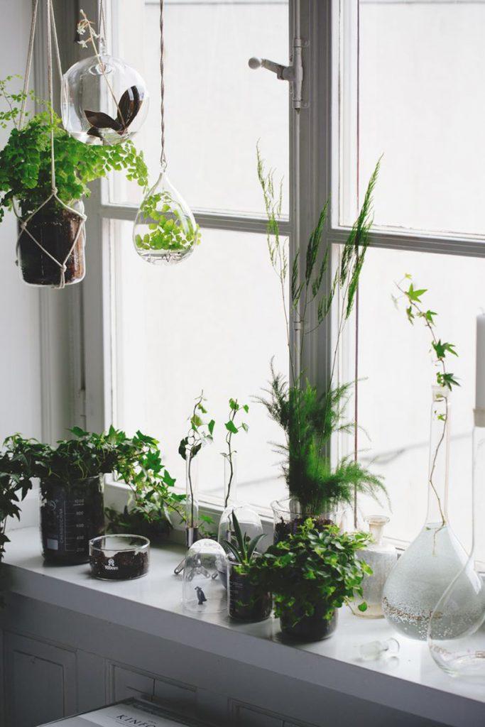 Un idea per i regali di natale vasi architettura e for Design della casa verde