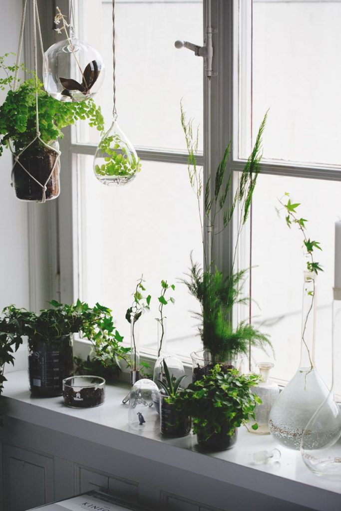 hanger-plant-macrame-eye-candy-designrulz-10-4