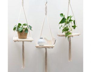 hanger-plant-images-2