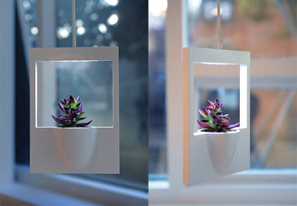 originali-vasi-da-appendere-al-soffitto-ideati-dal-designer-jung-hwa-jin-e-dal-nome-molto-evocativo-di-polaroid-flower-con-luce-integrata