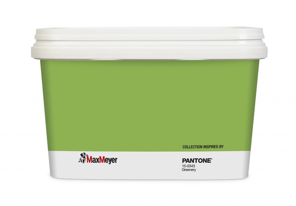 colore pantone grenery maxmeyer