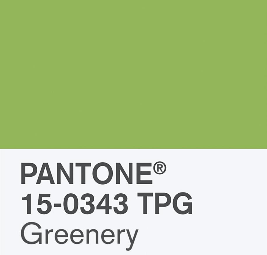 colore pantone 2017: greenery