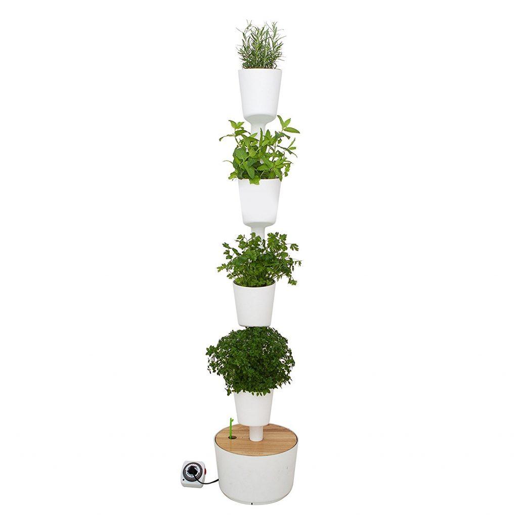 Arredare con le piante architettura e design a roma for Arredare parete