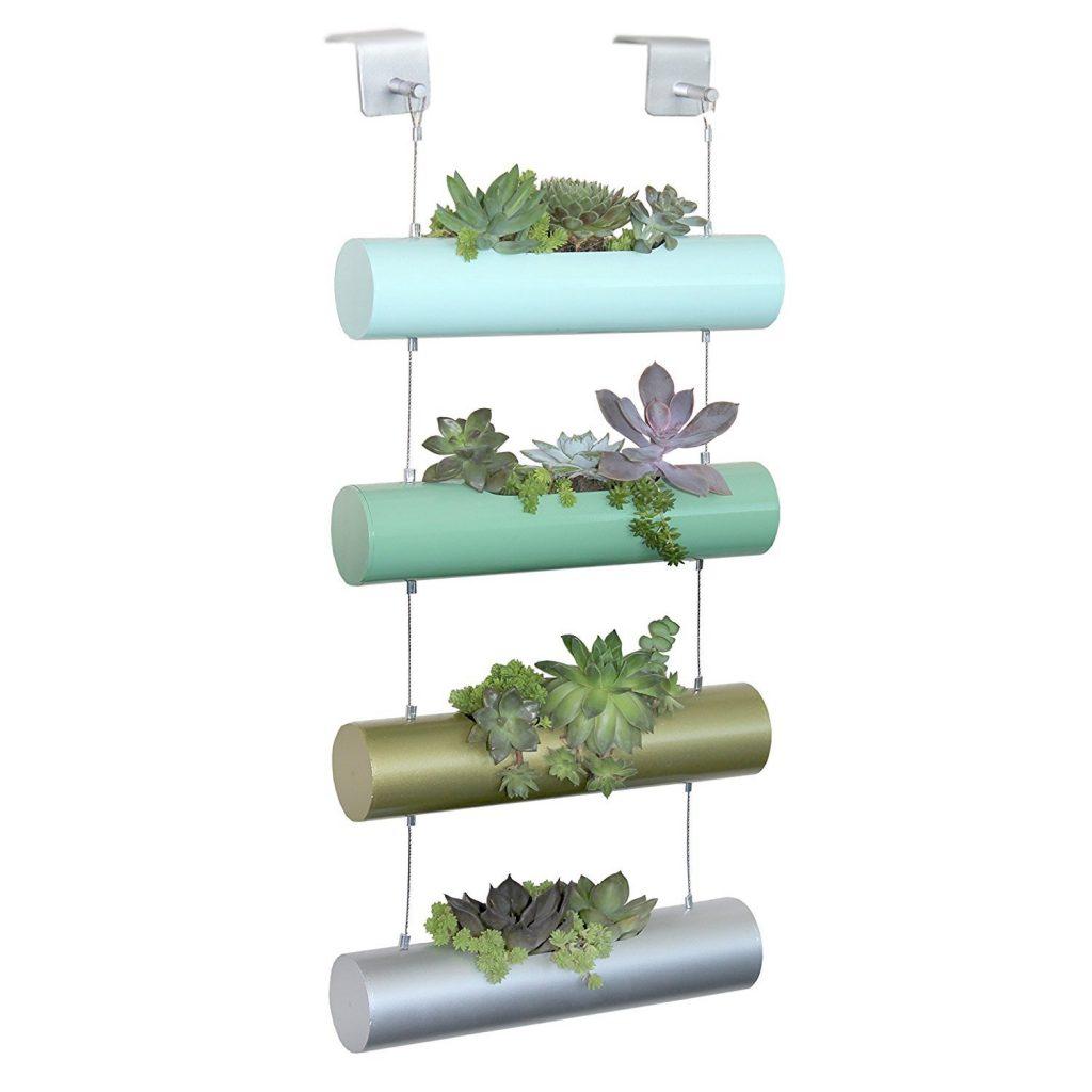 Arredare con le piante architettura e design a roma - Piante esotiche da giardino ...