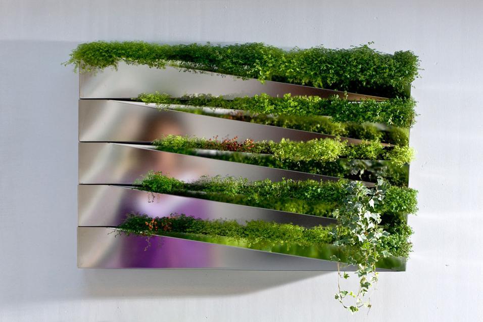 arredare con le piante
