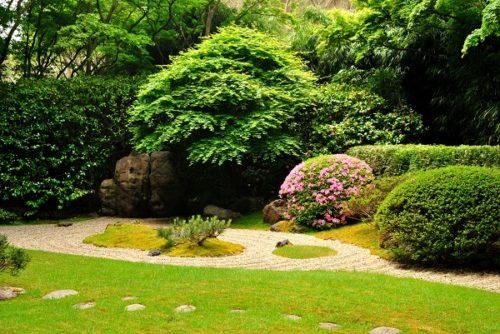 costi per la progettazione di un giardino