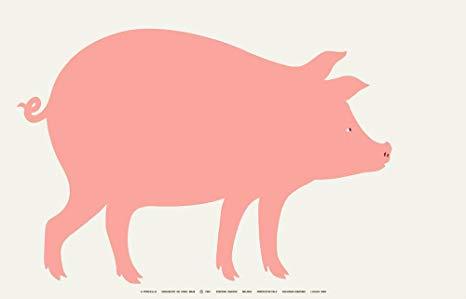 l'anno del maiale design